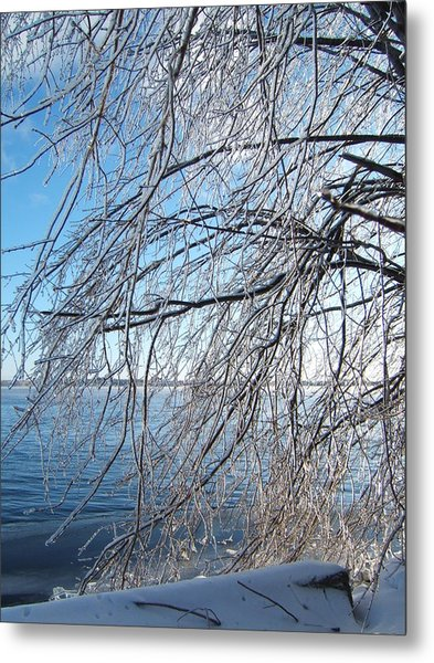 Winter Chill Metal Print by Margaret McDermott