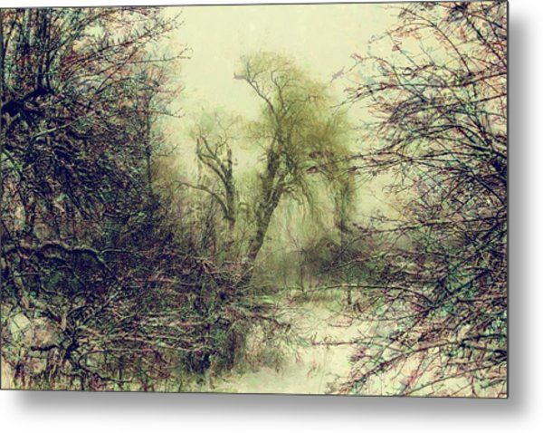 Winter Colours Metal Print