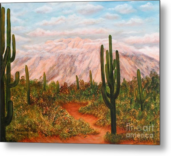 Winter Desert At Sunset Metal Print by Judy Filarecki