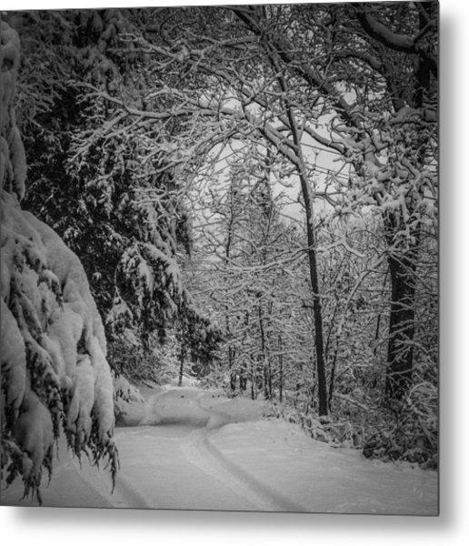 Winter Drive Metal Print
