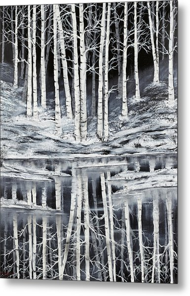 Winter Forest Metal Print by Premierlight Images