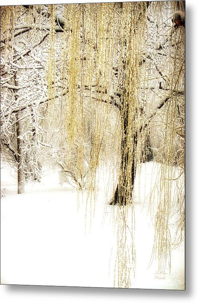 Winter Gold Metal Print