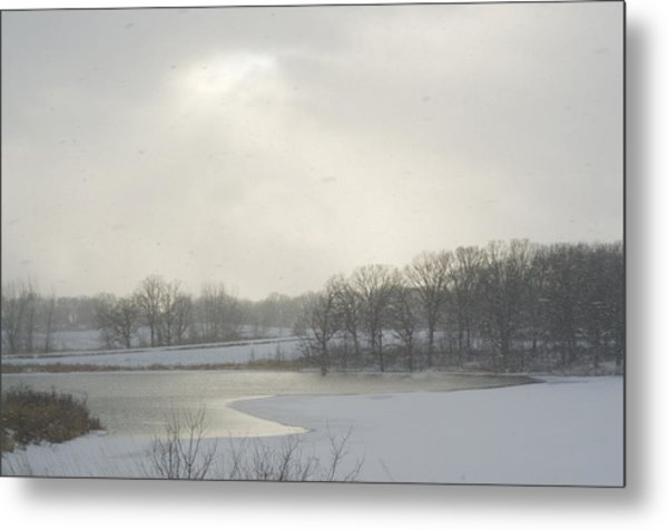 Winter Lake And Forest Metal Print