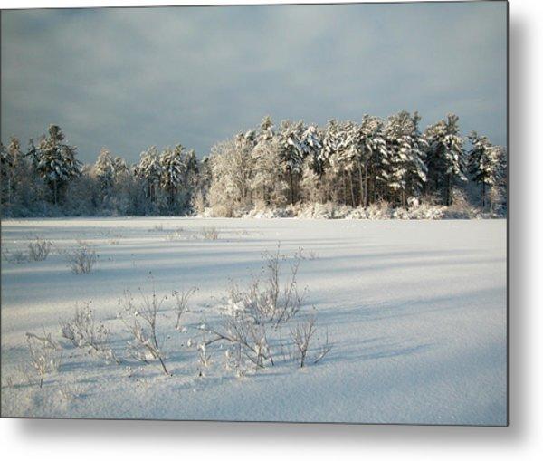 Winter Landscape At Mud Lake Ottawa Metal Print