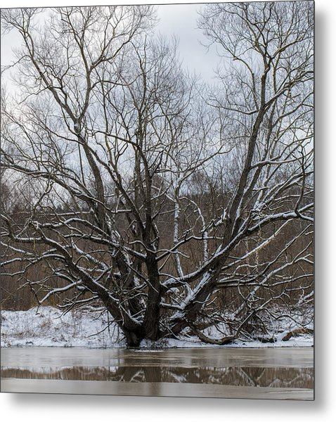 Metal Print featuring the photograph Winter  Leif Sohlman by Leif Sohlman