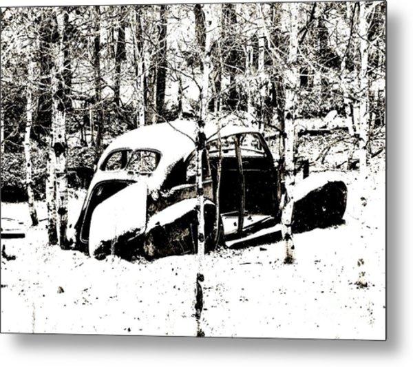 Winter Olds Metal Print