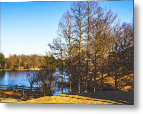 Winter On The Lake Metal Print by Barry Jones