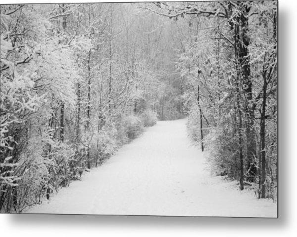 Winter Pathway Metal Print