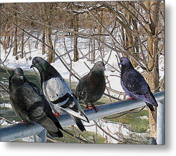 Winter Pigeon Party Metal Print