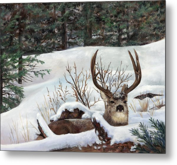 Winter Rest Metal Print