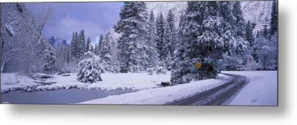 Winter Road, Yosemite Park, California Metal Print