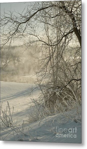 Winter Romance IIi Metal Print