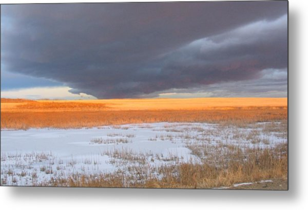 Winter Sky Alberta  Metal Print by Susan Copley