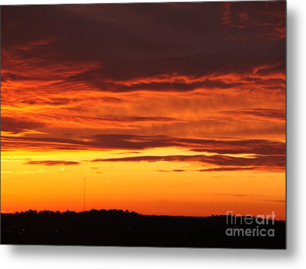 Winter Sky Metal Print by Paul Anderson
