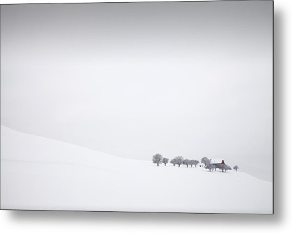 Winter Solitude Metal Print