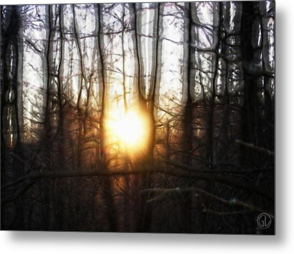 Winter Solstice Metal Print by Gun Legler