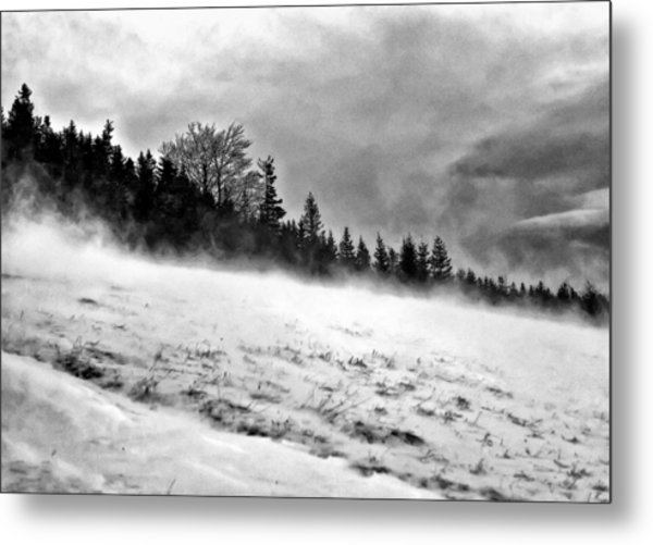 Winter Storm Metal Print