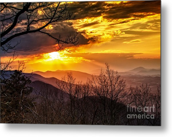 Winter Sun Metal Print by Mark East