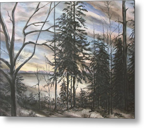 Winter Sunset Metal Print by Bev  Neely