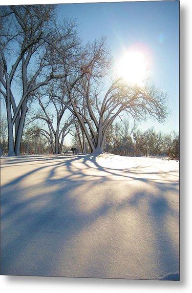 Winter Sunshine Metal Print