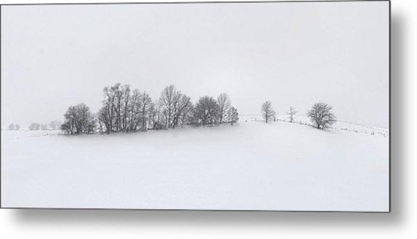 Winter Tree Line In Indiana Metal Print