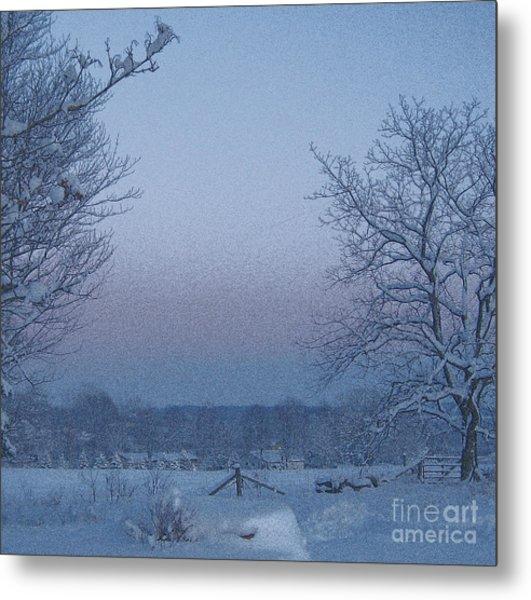 Winter Trees On West Michigan Farm At Sunrise Metal Print