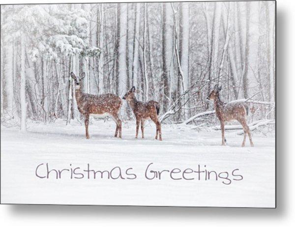 Winter Visits Card Metal Print