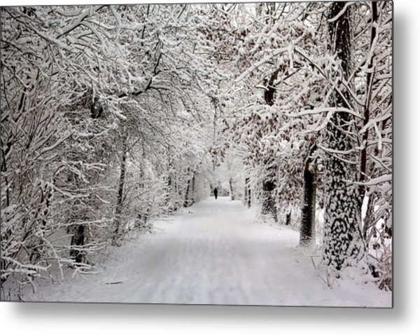 Winter Walk In Fairytale  Metal Print