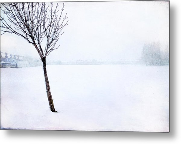 Winter Whiteout Metal Print