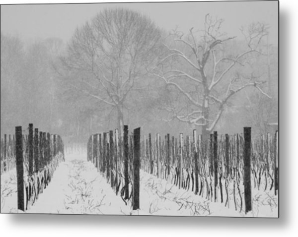 Winter Wine Metal Print