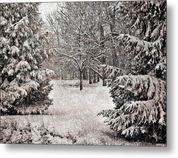Winter Wonder 7  Metal Print