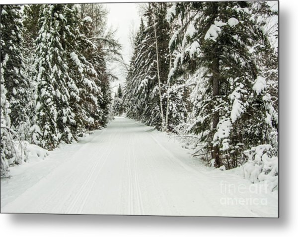 Winter Wonder Land Metal Print