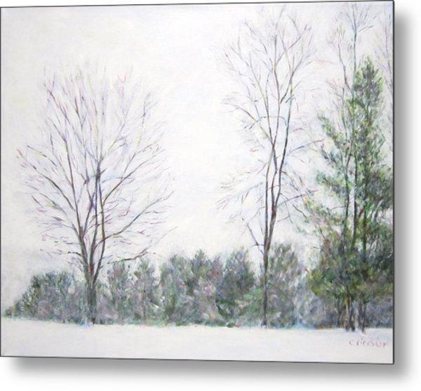 Winter Wonderland Usa Metal Print