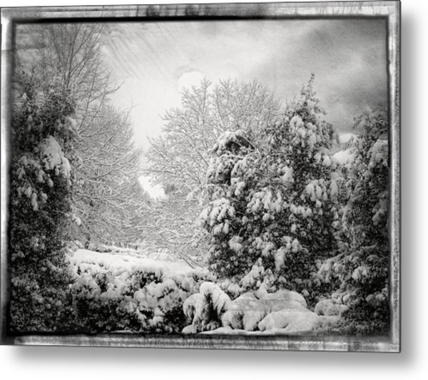Winter Wonderland With Filmic Border Metal Print