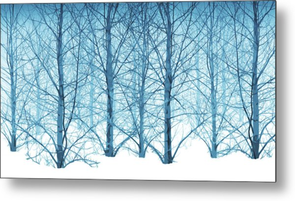 Winter Woodland In Blue Metal Print