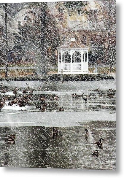 Wintering Geese On Silver Lake Metal Print
