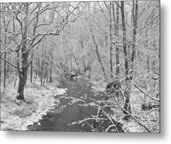 Winterlake Metal Print by Nancy Edwards