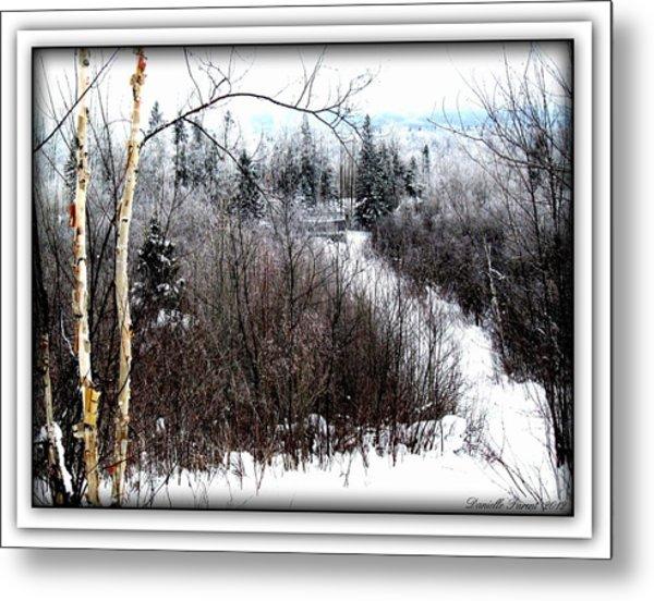 Winterlude Metal Print