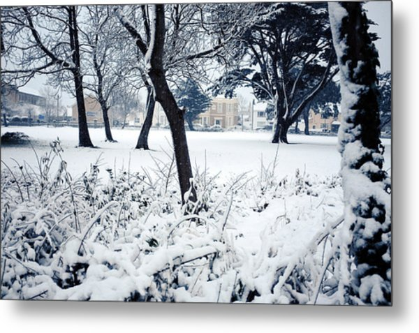Winter's Blanket Metal Print