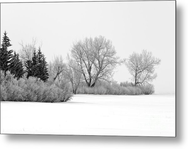Winter's Cloak Metal Print