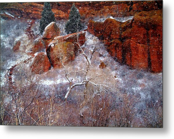 Winters Intrigue.. Metal Print by Al  Swasey