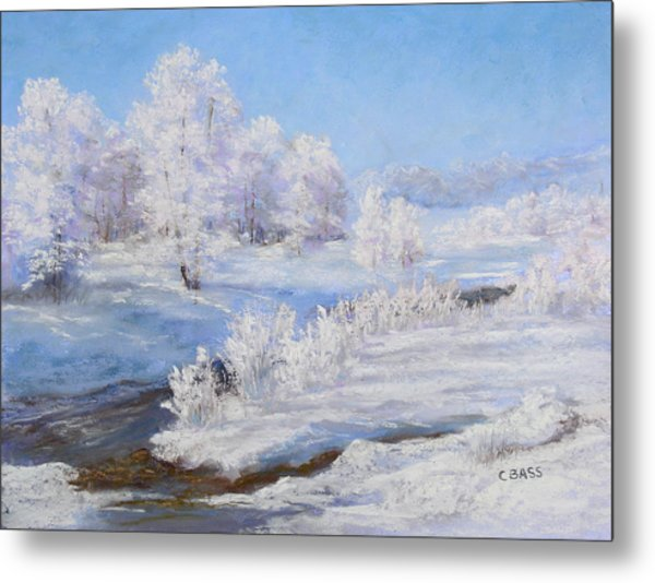 Winter's Whites Metal Print by Christine Bass