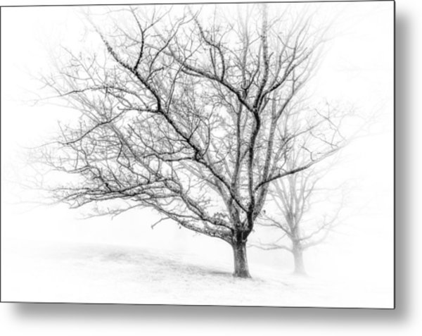 Winter's Work Metal Print
