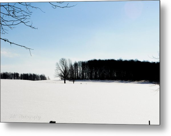 Winterscape 2  Metal Print by BandC  Photography