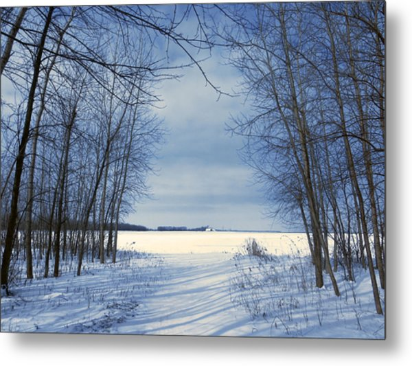 Wintertime At Sheldon Marsh Metal Print