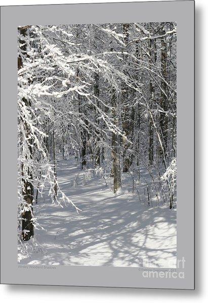 Wintery Woodland Shadows Metal Print