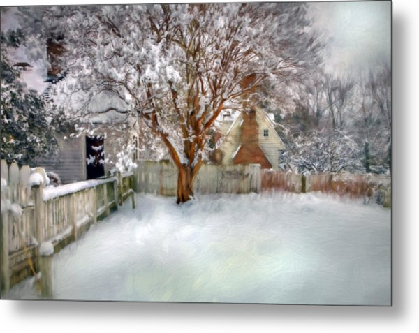 Wintry Garden Metal Print