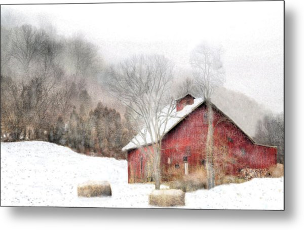 Wintry Mix Metal Print