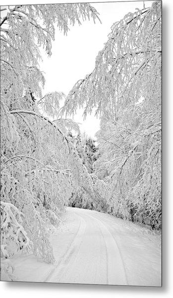 Wintry Road Metal Print by Conny Sjostrom