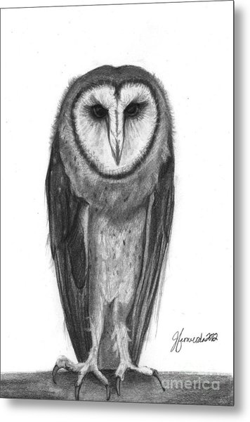 Wisdom With Feathers Metal Print